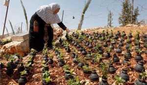 مادر فلسطيني با بمب هاي اسرائيل گلدان درست کرد