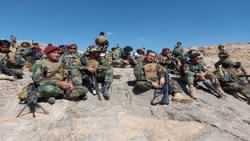 طالبان در افغانستان تلفات سنگين دادند / 271 طالب کشته شد